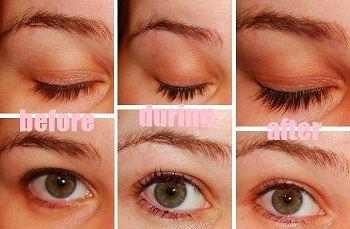 eyelash dye before during after
